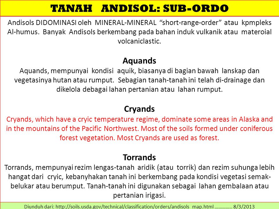 TANAH ANDISOL: SUB-ORDO