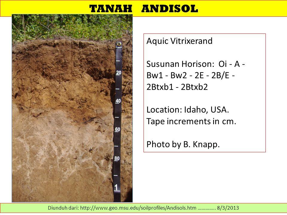 TANAH ANDISOL Aquic Vitrixerand