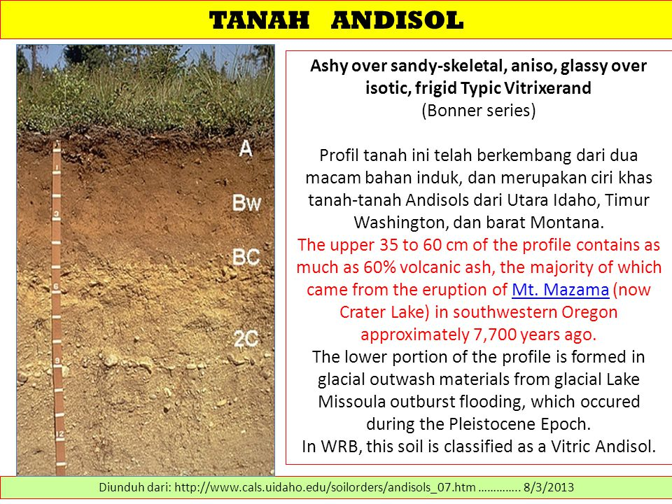 In WRB, this soil is classified as a Vitric Andisol.