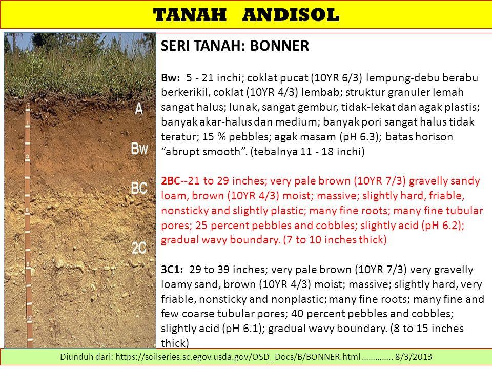 TANAH ANDISOL SERI TANAH: BONNER