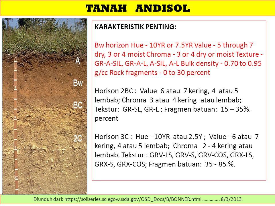 TANAH ANDISOL KARAKTERISTIK PENTING:
