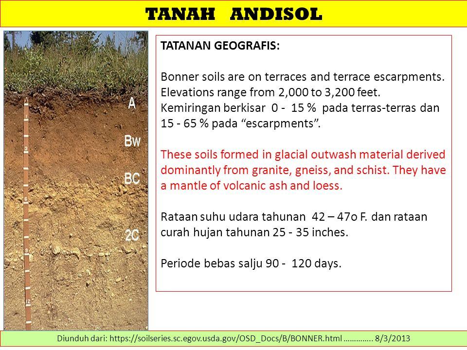 TANAH ANDISOL TATANAN GEOGRAFIS: