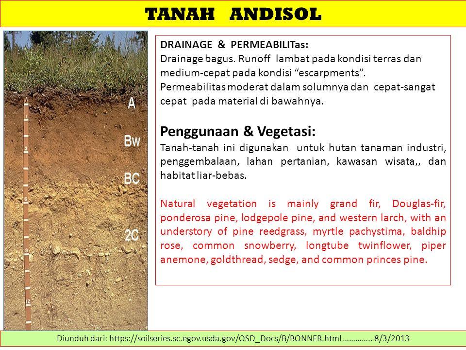 TANAH ANDISOL Penggunaan & Vegetasi: DRAINAGE & PERMEABILITas: