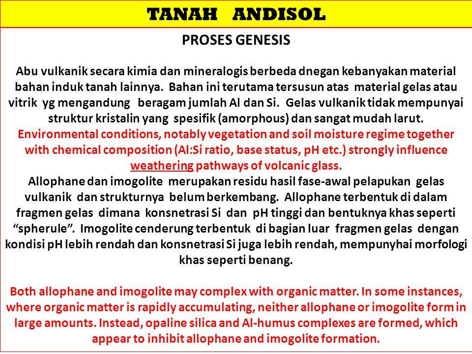 TANAH ANDISOL PROSES GENESIS