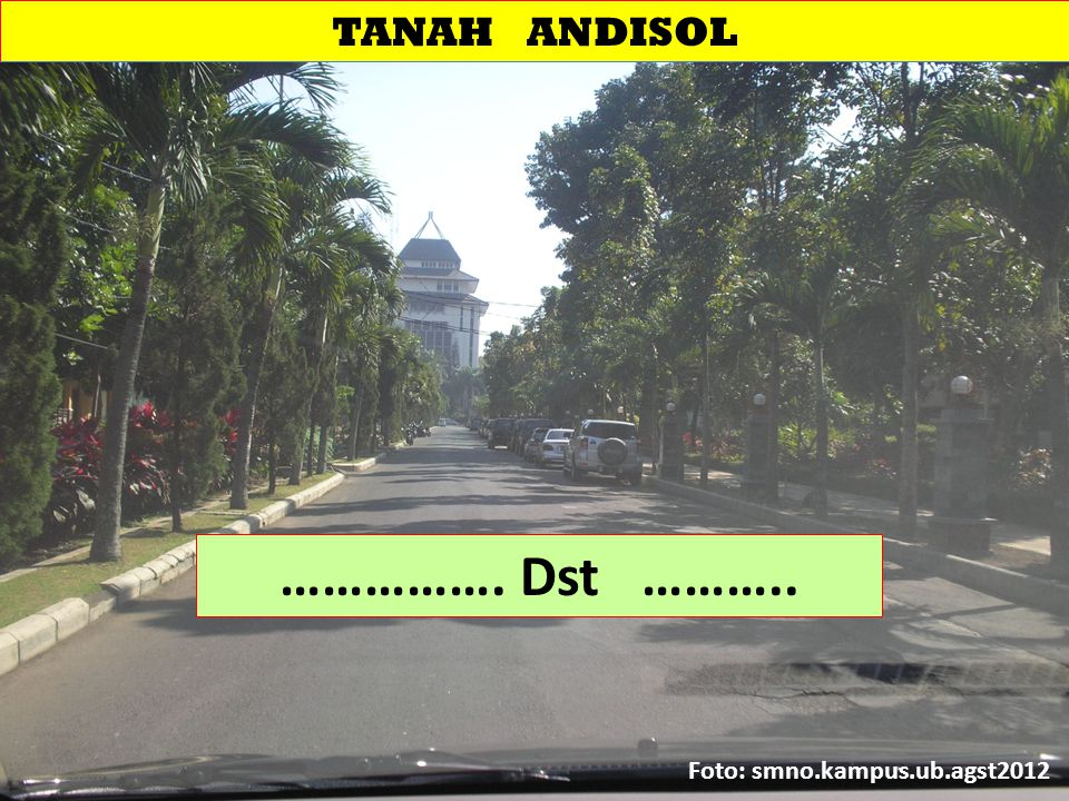TANAH ANDISOL ……………. Dst ……….. Foto: smno.kampus.ub.agst2012