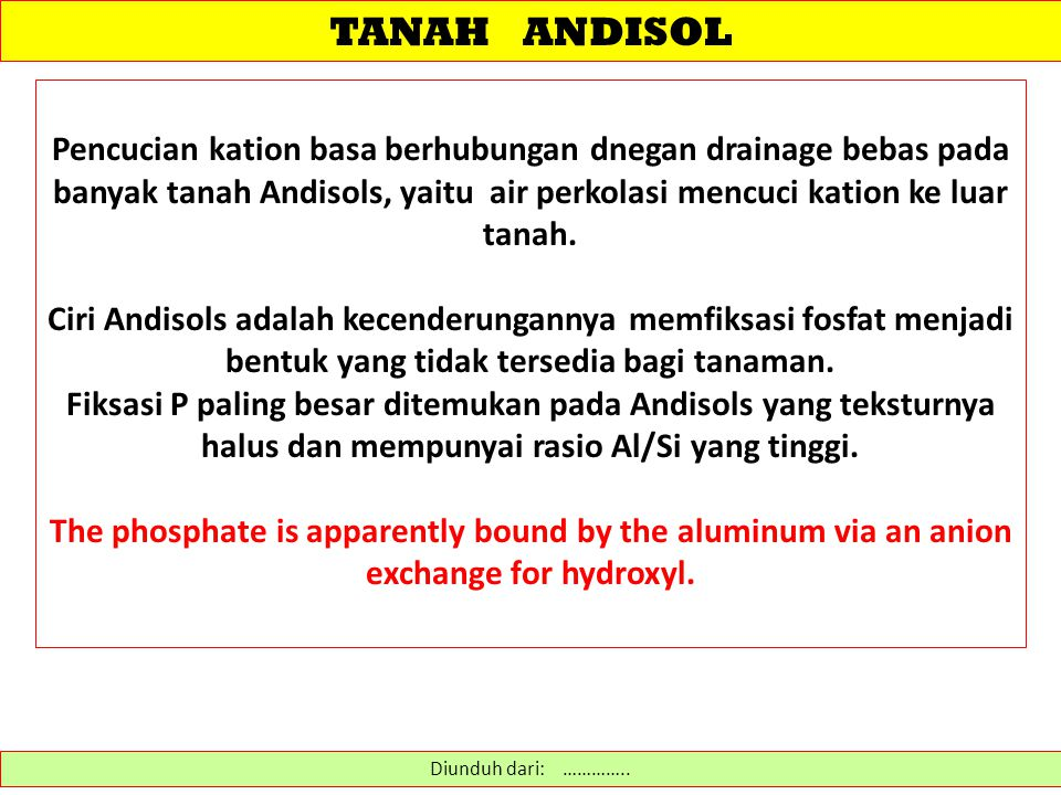 TANAH ANDISOL