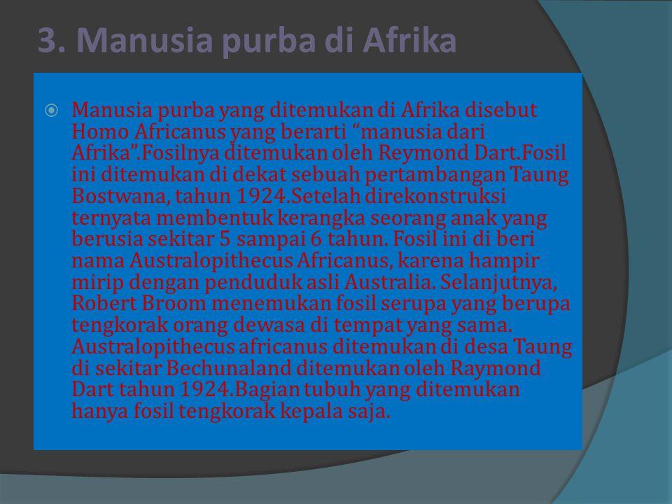 3. Manusia purba di Afrika