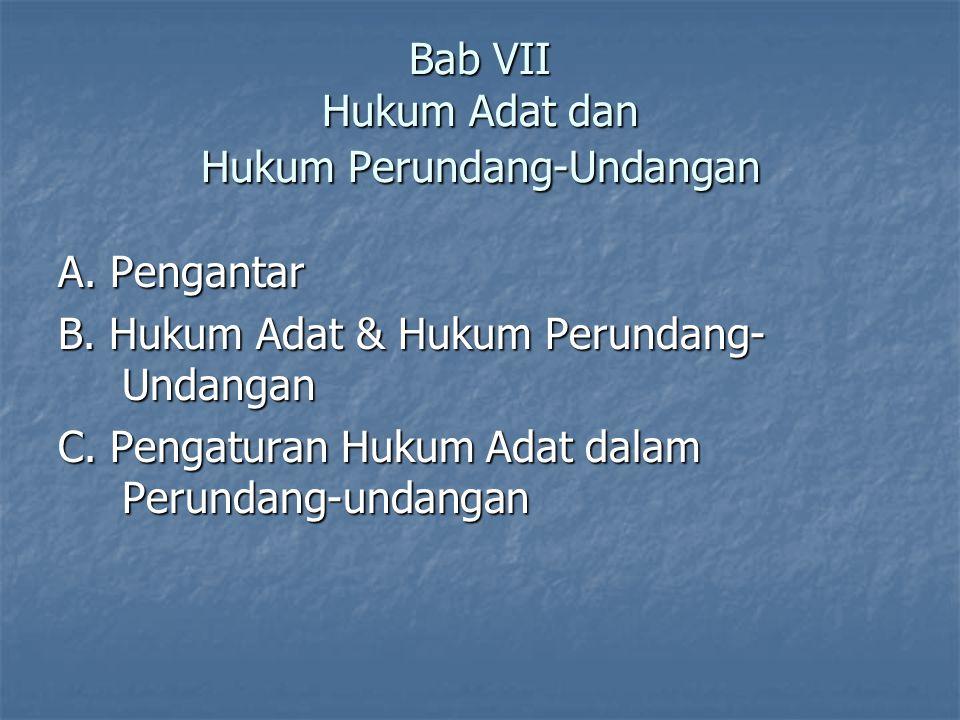 Bab VII Hukum Adat dan Hukum Perundang-Undangan