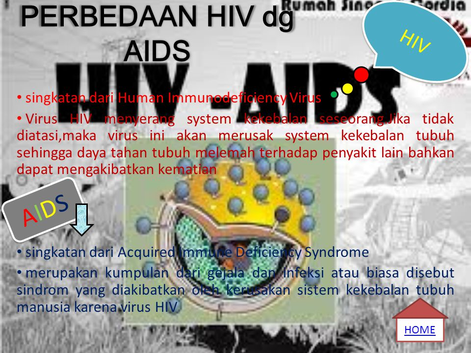 PERBEDAAN HIV dg AIDS AIDS HIV
