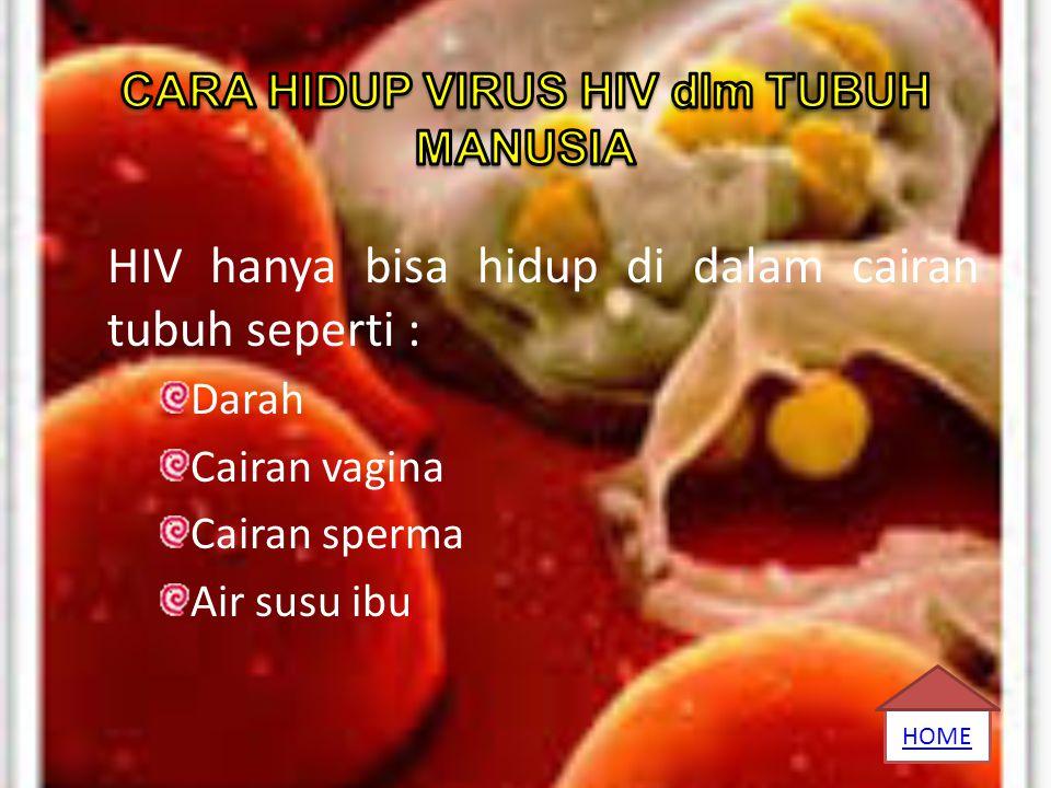 CARA HIDUP VIRUS HIV dlm TUBUH MANUSIA