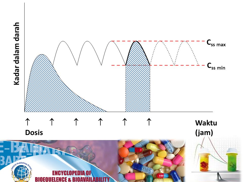 Css max Kadar dalam darah Css min       Waktu Dosis (jam)