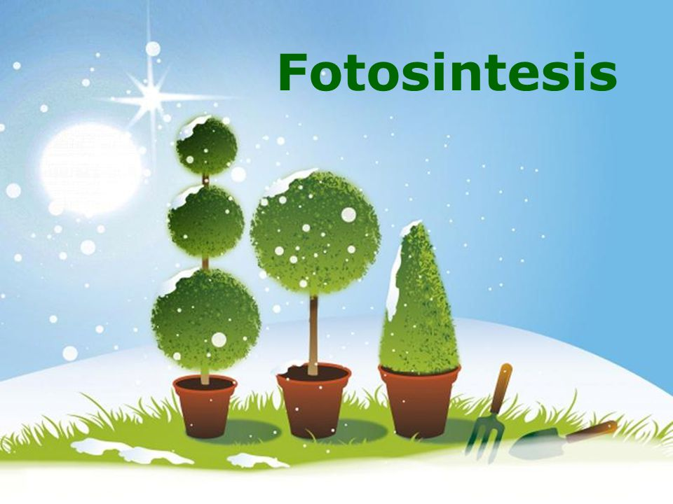 Fotosintesis Powerpoint Templates