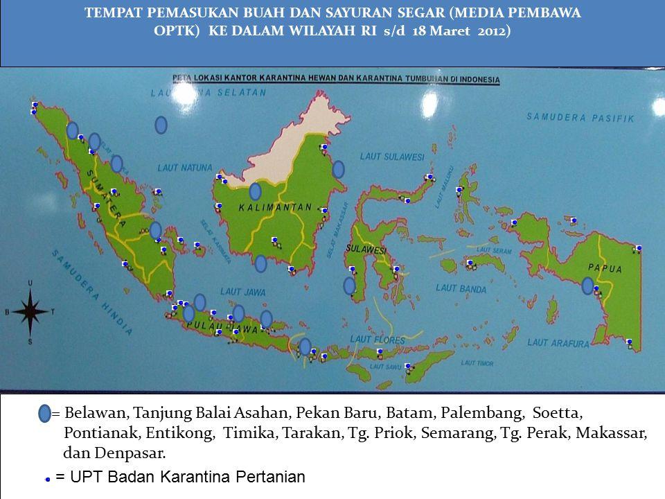 = Belawan, Tanjung Balai Asahan, Pekan Baru, Batam, Palembang, Soetta,