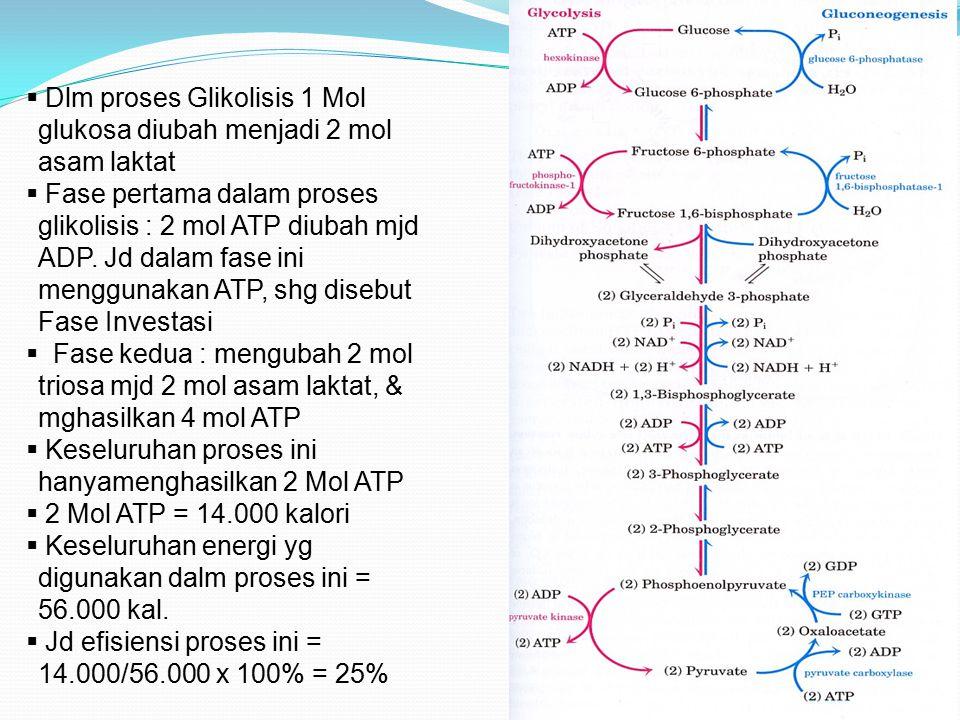 Dlm proses Glikolisis 1 Mol glukosa diubah menjadi 2 mol asam laktat