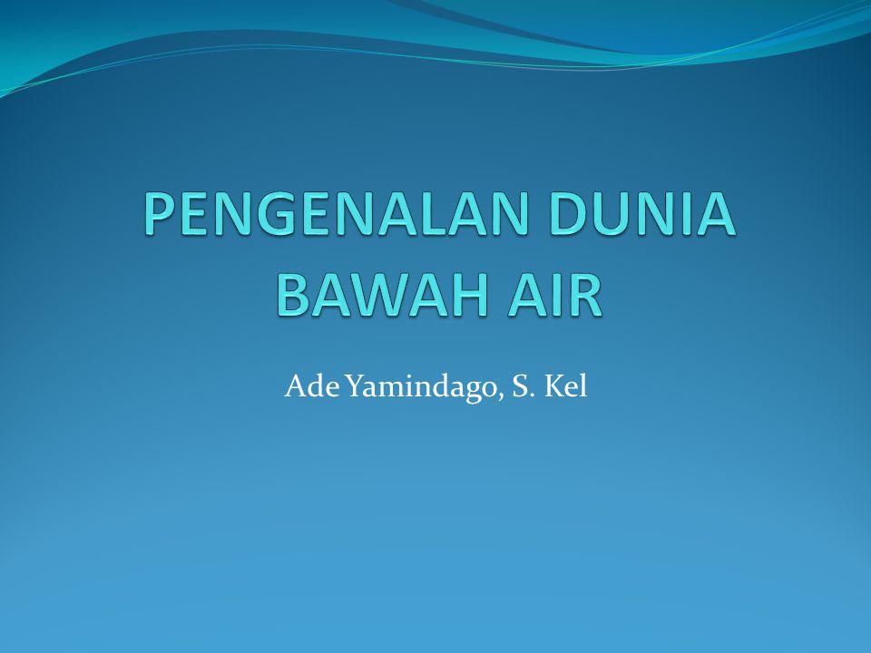 PENGENALAN DUNIA BAWAH AIR