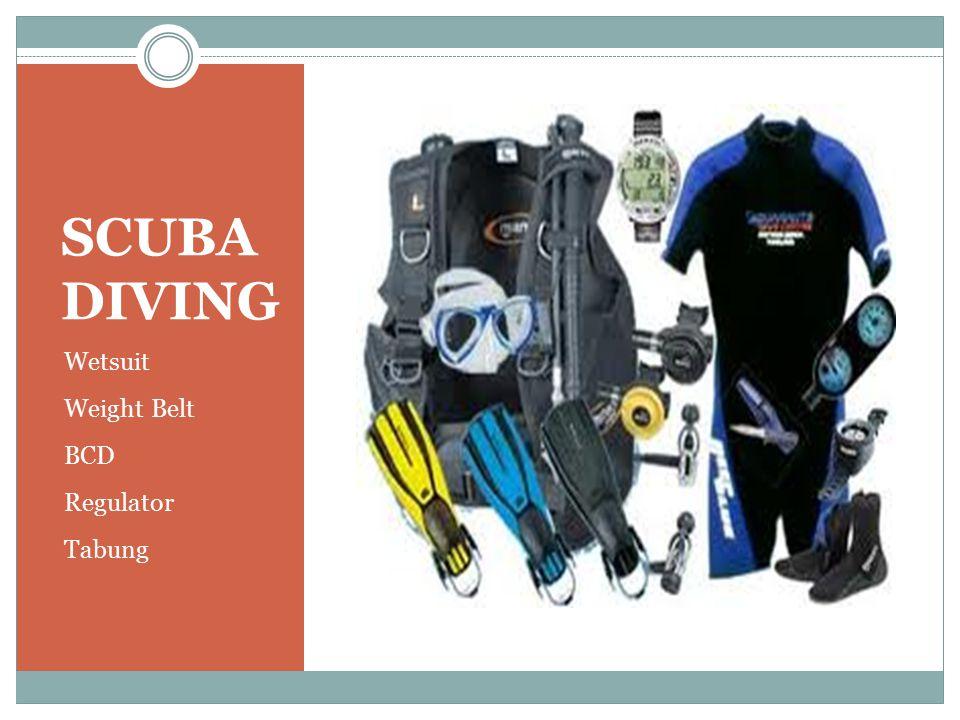 SCUBA DIVING Wetsuit Weight Belt BCD Regulator Tabung