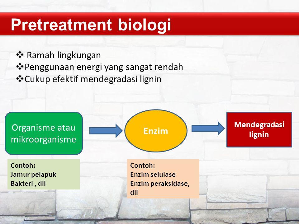Organisme atau mikroorganisme
