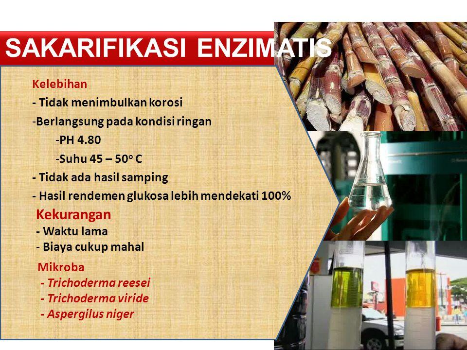 Sakarifikasi Enzimatis