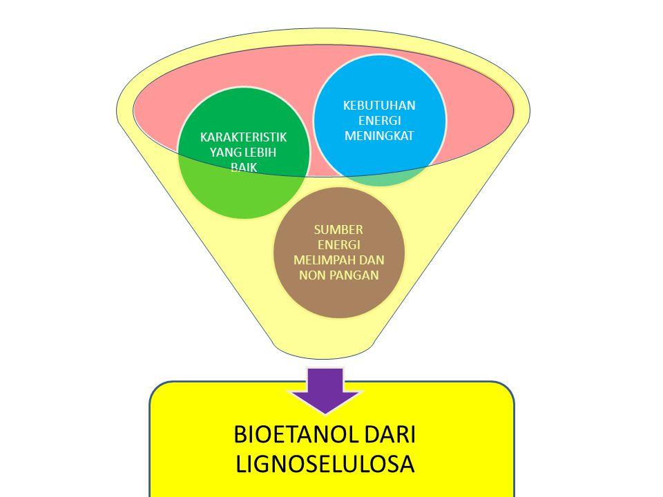 BIOETANOL DARI LIGNOSELULOSA