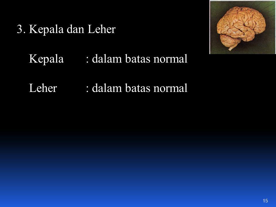 3. Kepala dan Leher Kepala : dalam batas normal Leher : dalam batas normal