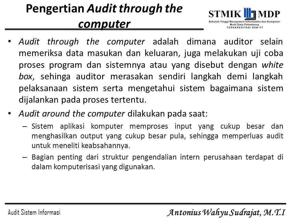 Pengertian Audit through the computer