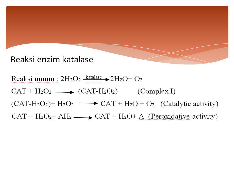 Reaksi enzim katalase