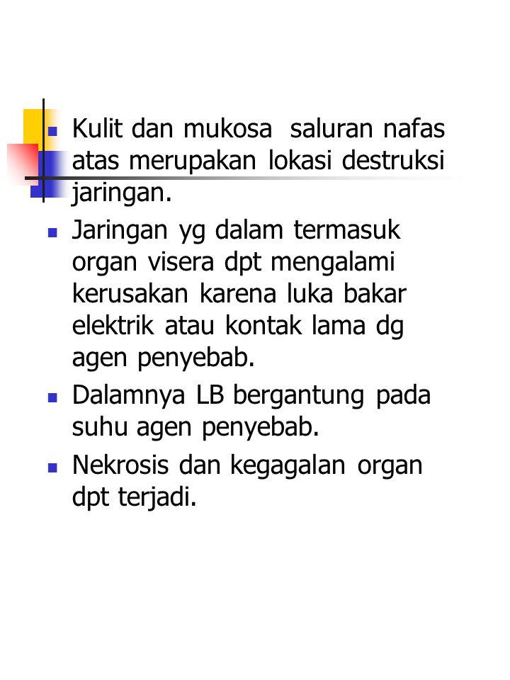 Kulit dan mukosa saluran nafas atas merupakan lokasi destruksi jaringan.