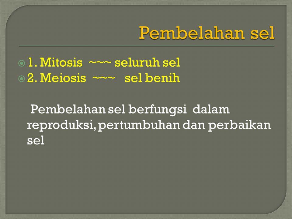 Pembelahan sel 1. Mitosis ~~~ seluruh sel 2. Meiosis ~~~ sel benih