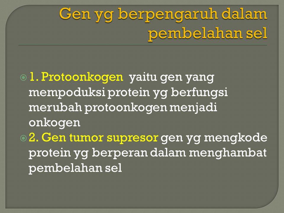 Gen yg berpengaruh dalam pembelahan sel