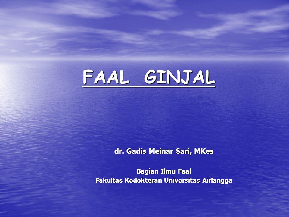 dr. Gadis Meinar Sari, MKes Fakultas Kedokteran Universitas Airlangga