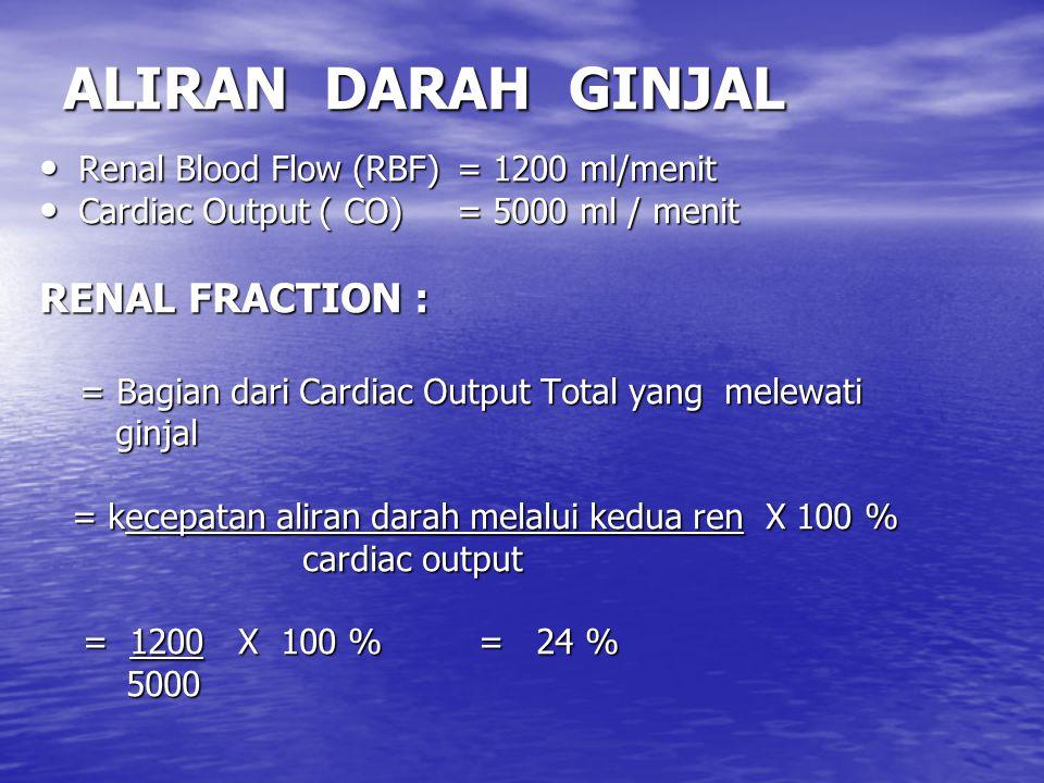 ALIRAN DARAH GINJAL RENAL FRACTION :