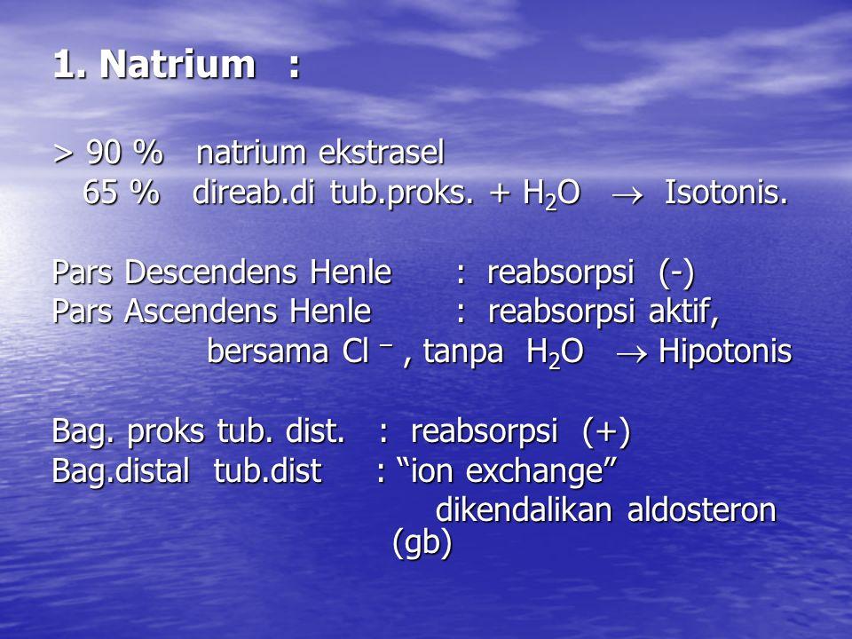 1. Natrium : > 90 % natrium ekstrasel