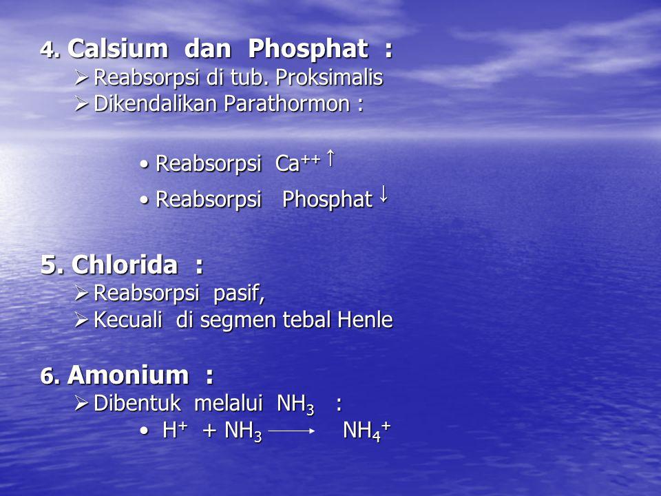 5. Chlorida : 4. Calsium dan Phosphat : Reabsorpsi di tub. Proksimalis
