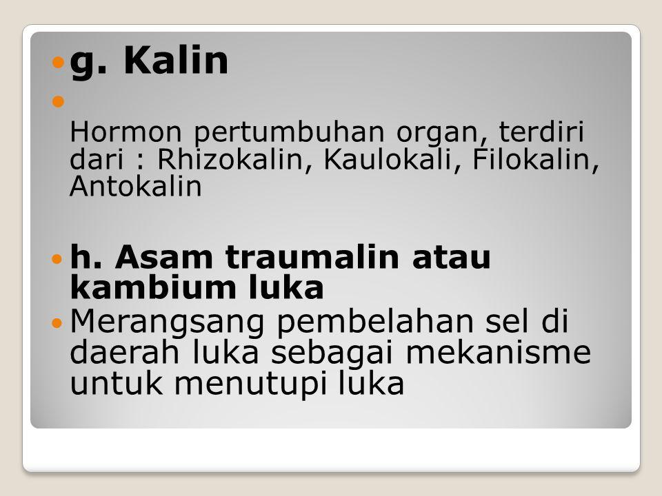 g. Kalin Hormon pertumbuhan organ, terdiri dari : Rhizokalin, Kaulokali, Filokalin, Antokalin. h. Asam traumalin atau kambium luka.