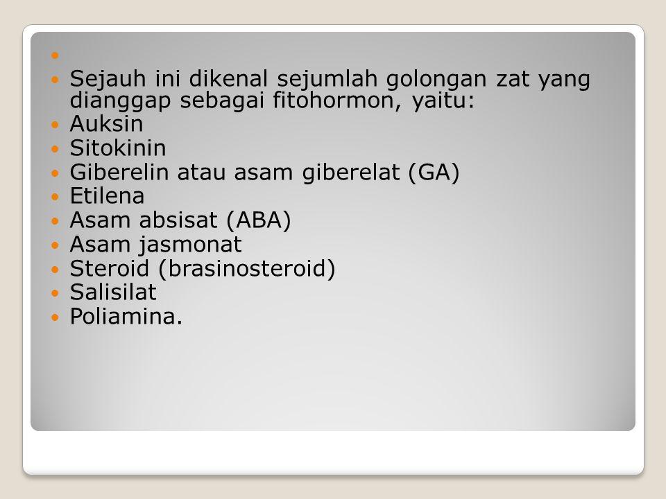 Sejauh ini dikenal sejumlah golongan zat yang dianggap sebagai fitohormon, yaitu: Auksin. Sitokinin.