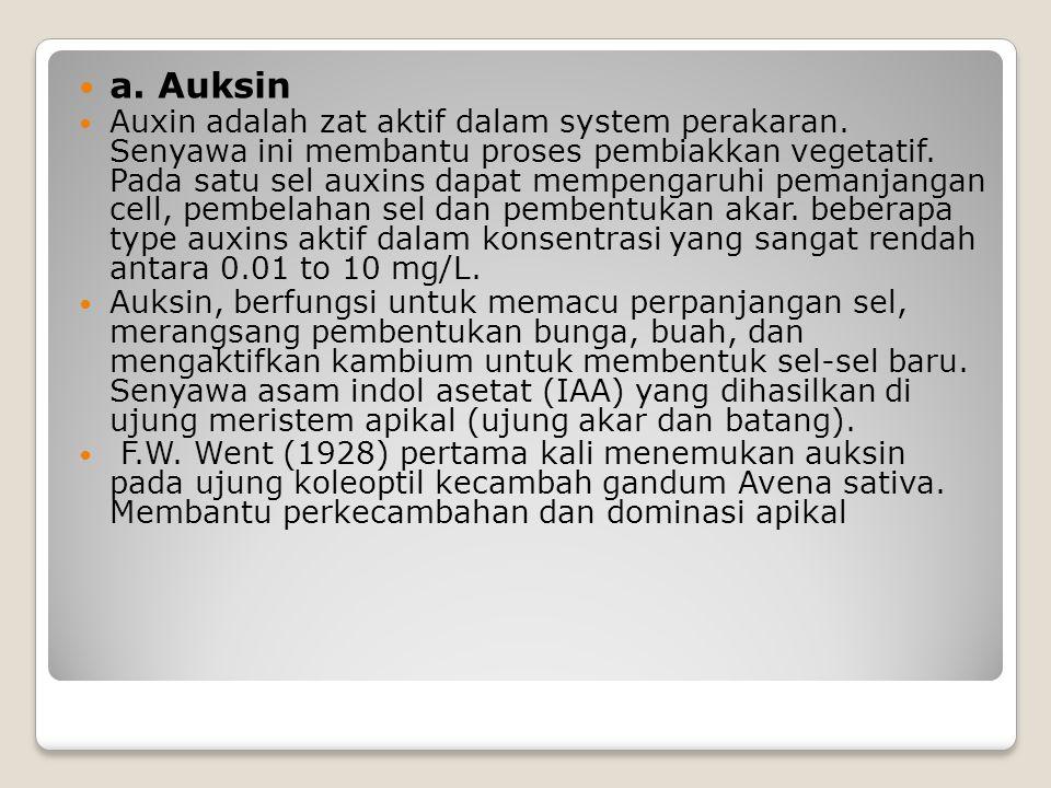 a. Auksin