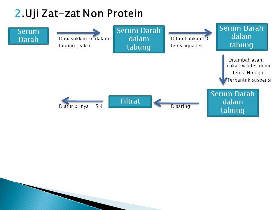 2.Uji Zat-zat Non Protein