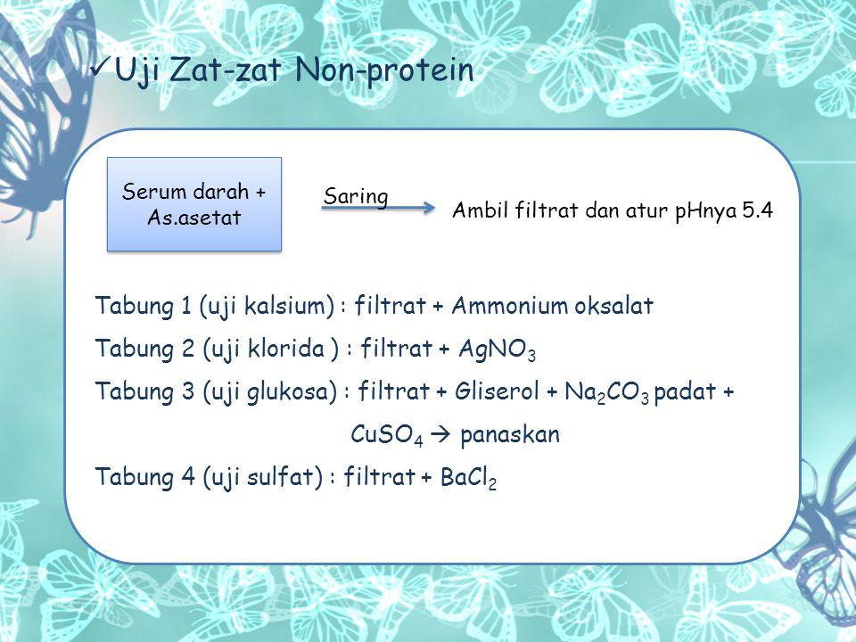 Uji Zat-zat Non-protein