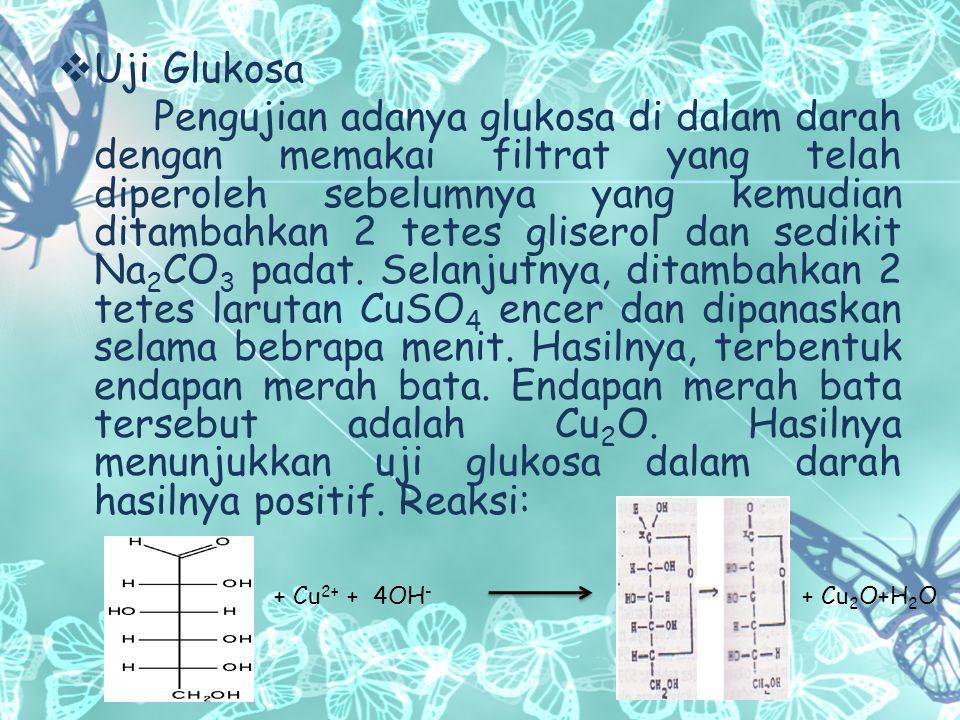 Uji Glukosa