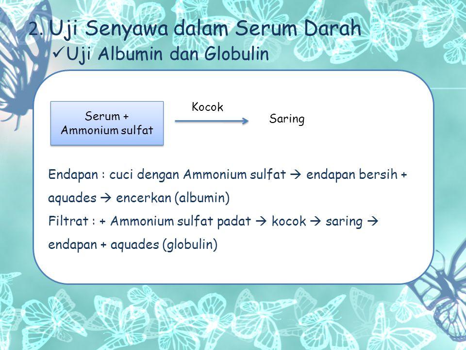 Serum + Ammonium sulfat