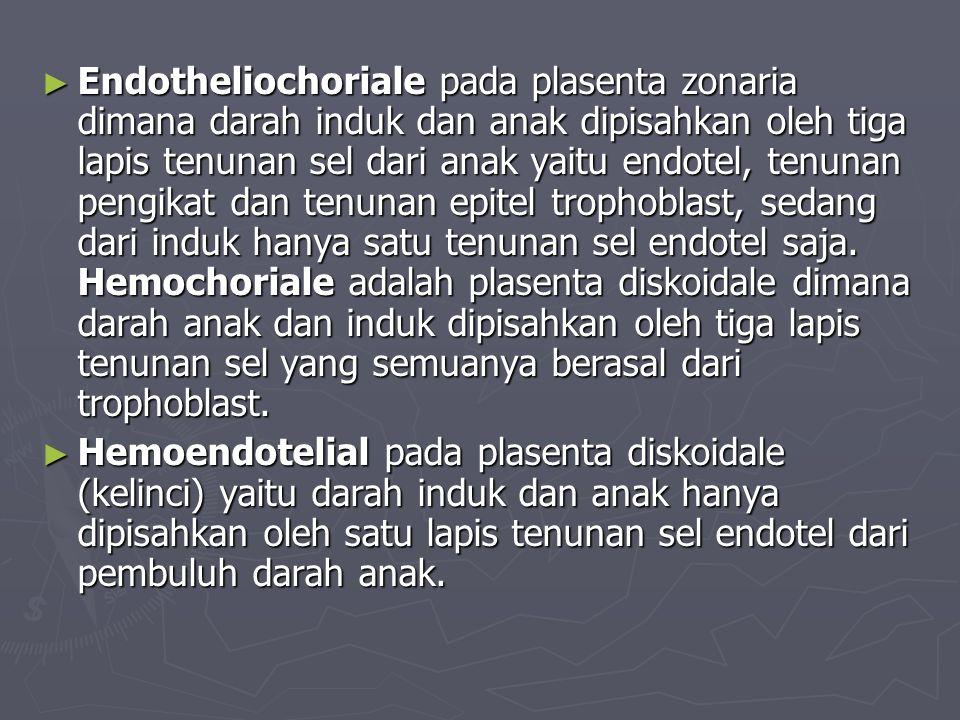 Endotheliochoriale pada plasenta zonaria dimana darah induk dan anak dipisahkan oleh tiga lapis tenunan sel dari anak yaitu endotel, tenunan pengikat dan tenunan epitel trophoblast, sedang dari induk hanya satu tenunan sel endotel saja. Hemochoriale adalah plasenta diskoidale dimana darah anak dan induk dipisahkan oleh tiga lapis tenunan sel yang semuanya berasal dari trophoblast.