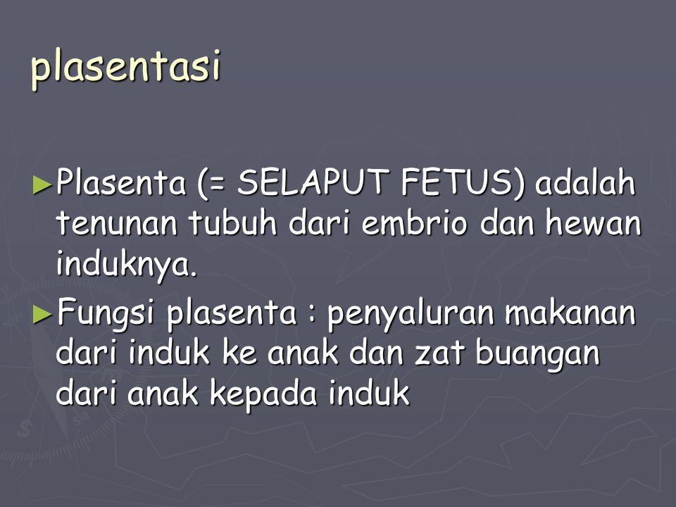 plasentasi Plasenta (= SELAPUT FETUS) adalah tenunan tubuh dari embrio dan hewan induknya.