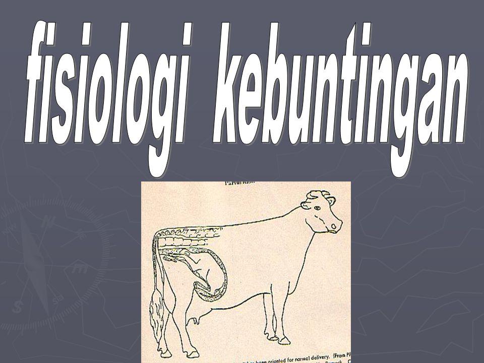 fisiologi kebuntingan