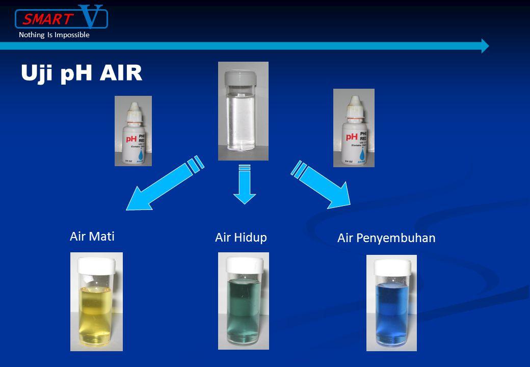 V Uji pH AIR SMART Air Mati Air Hidup Air Penyembuhan