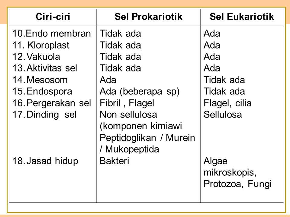 Ciri-ciri Sel Prokariotik. Sel Eukariotik. 10.Endo membran. 11. Kloroplast. Vakuola. Aktivitas sel.