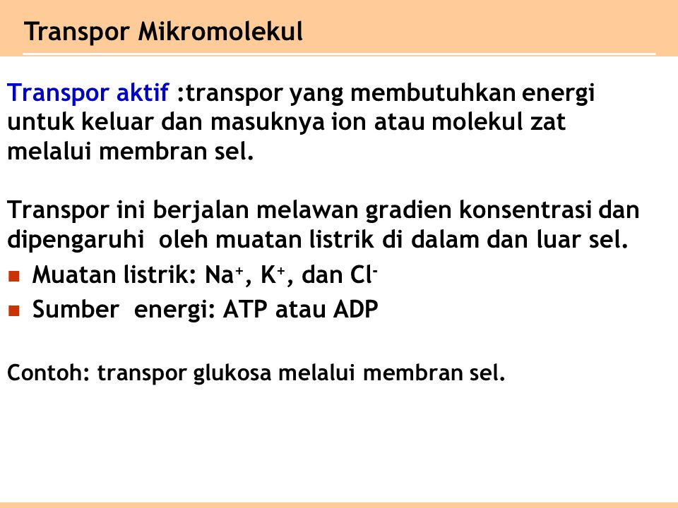 Transpor Mikromolekul