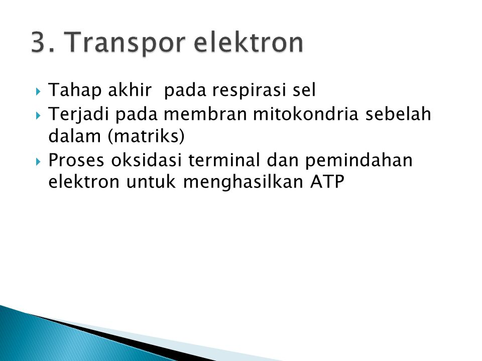 3. Transpor elektron Tahap akhir pada respirasi sel