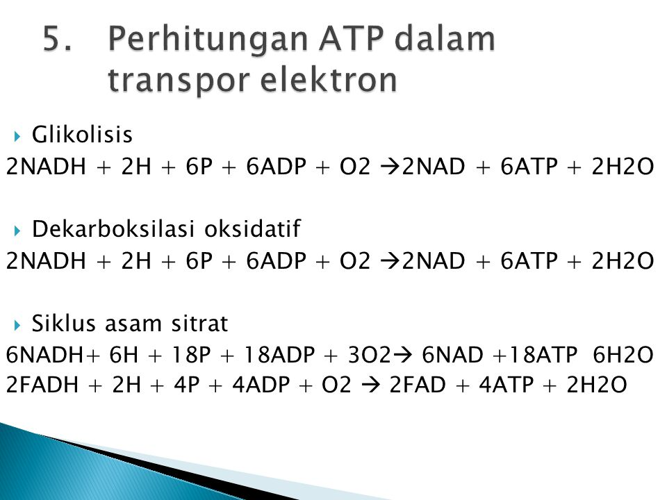 5. Perhitungan ATP dalam transpor elektron