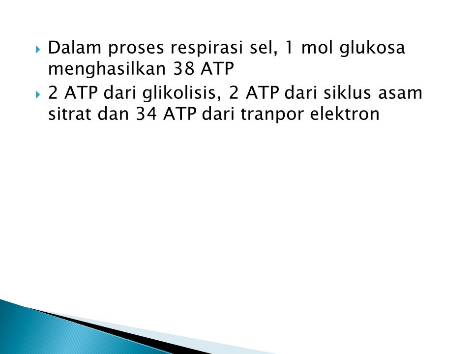 Dalam proses respirasi sel, 1 mol glukosa menghasilkan 38 ATP