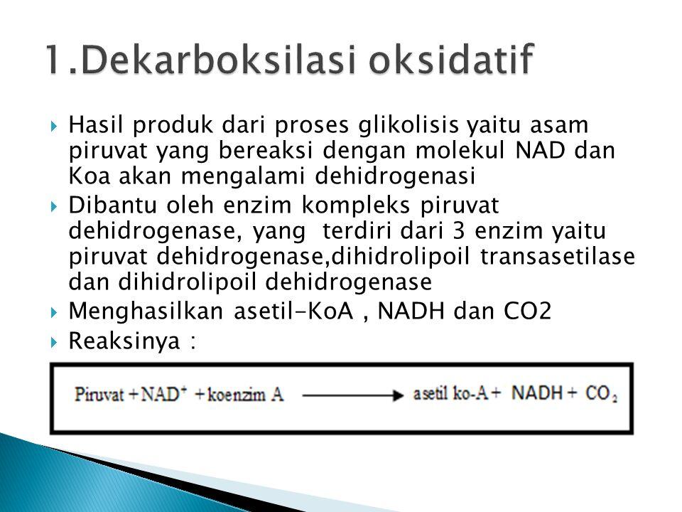 1.Dekarboksilasi oksidatif